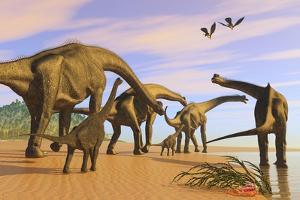 A Brachiosaurus Herd Walks Down a Wet Sandy Beach