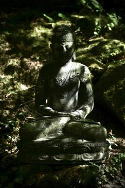 A Buddha Statue in the Garden of Zen Temple Ryumonji Illuminated by the Last Sun Rays of the Day