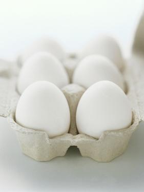 A Carton of Six White Eggs