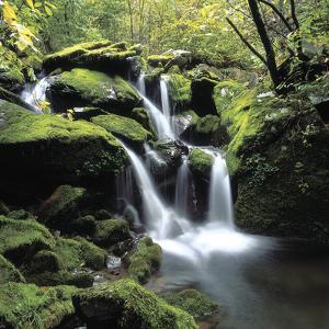A Cascading Waterfall