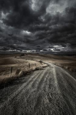 A Country Road in Field with Stormy Sky Above, Tuscany, Italy