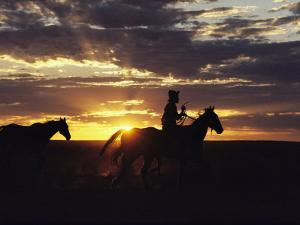 A Cowboy and His Horses Silhouetted against the Evening Sky