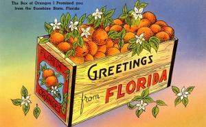 A Crate of Oranges From Florida