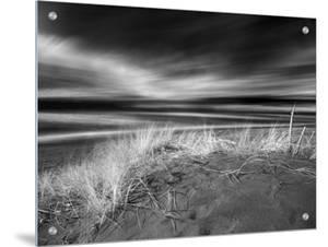 Beach Scene in Monterey, California by A.D.