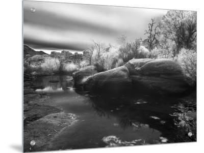 Rocks and Trees at Barker Dam in Joshua Tree National Park