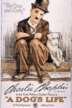A Dog's Life Movie Charlie Chaplin Plastic Sign