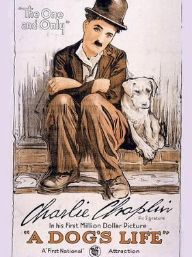 A Dog's Life Movie Charlie Chaplin