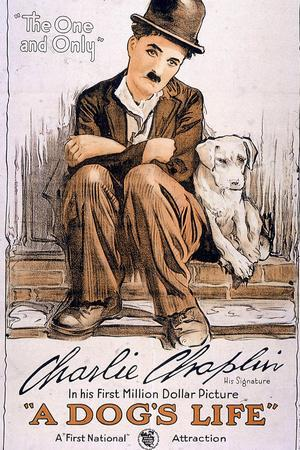 https://imgc.allpostersimages.com/img/posters/a-dog-s-life-movie-charlie-chaplin_u-L-PYAXRK0.jpg?artPerspective=n