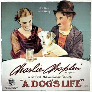 A Dogs Life, 1918