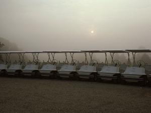 A Fleet of Golf Carts