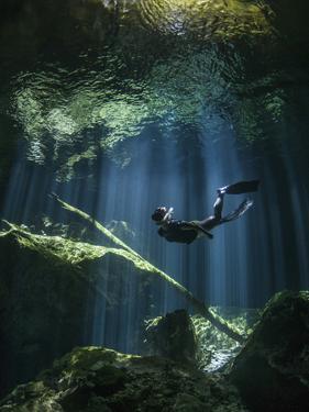 A Freediver in Taj Mahal Cenote in Mexico