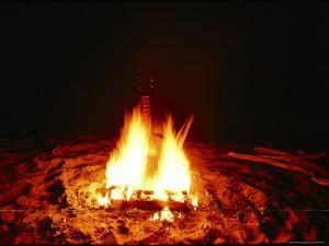 A Guitar Burns in a Campfire