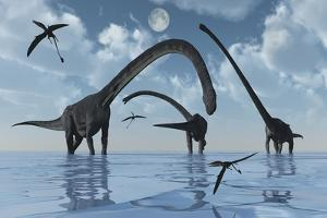 A Herd of Omeisaurus Sauropod Dinosaurs in Shallow Water