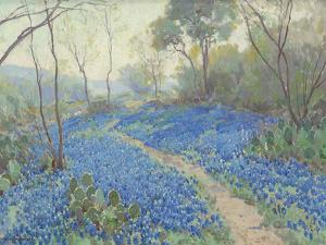 A Hillside of Bluebonnets - Early Morning, Near San Antonio Texas