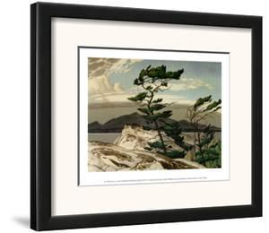 White Pine by A. J. Casson