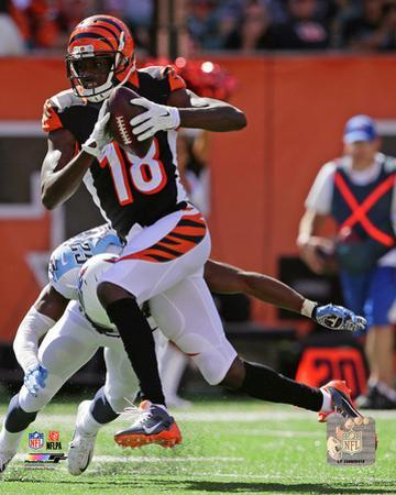 A.J. Green 2014 Action