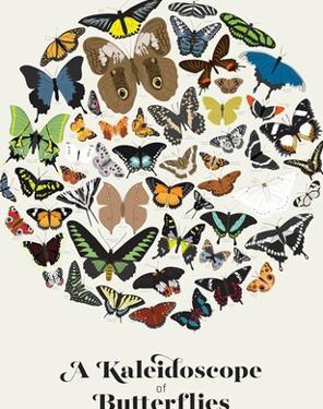 A Kaleidoscope of Butterflies