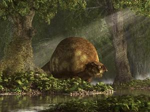 A Large Glyptodon Stands Near the Edge of a Stream