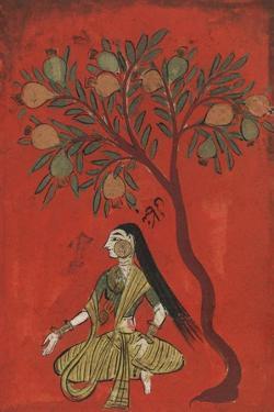 A Maiden Seated Beneath a Pomergranate Tree