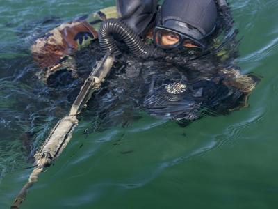 https://imgc.allpostersimages.com/img/posters/a-navy-seal-combat-swimmer_u-L-PJ390A0.jpg?artPerspective=n