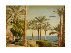 Retro Image Of Beach With Date Palms Amid The Blue Sea And Sky. Paper Texture by A_nella