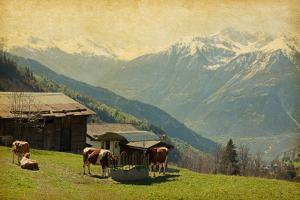 Small Farm in Swiss Alps.  Bodmen, Valais, Switzerland. Added Paper Texture by A_nella