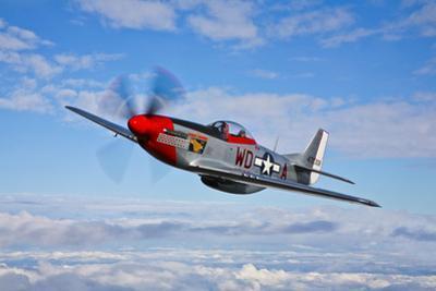 A P-51D Mustang in Flight Near Hollister, California