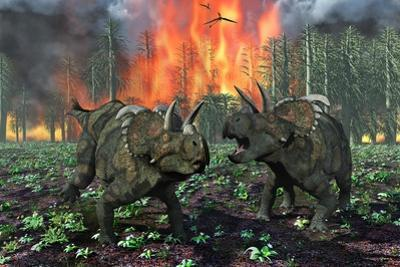 A Pair of Albertaceratops Running Away from a Forest Fire