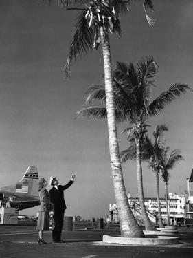 A Pan American Pilot and Flight Attendant the Edge of the Tarmac at Miami International Airport