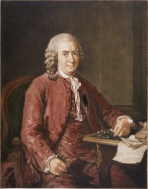 Carl Von Linne Known as Linnaeus Swedish Naturalist and Botanist by A. Roslin