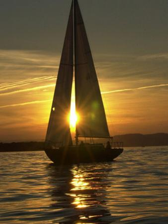 A Sailboat Heads Back to its Mooring