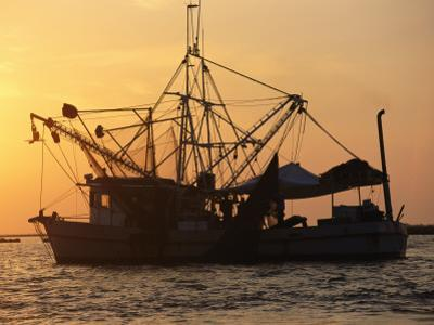 A Shrimp Boat Silhouetted against an Orange Sky