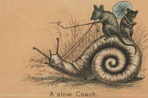 A Slow Coach Mice Riding A Snail