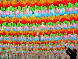 A South Korean Worker Decorates Lanterns to Celebrate Buddha's Upcoming Birthday