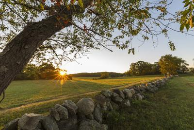 https://imgc.allpostersimages.com/img/posters/a-stone-wall-and-field-at-sunrise-in-essex-massachusetts_u-L-Q1D0VBK0.jpg?p=0