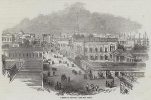 A Street in Calcutta