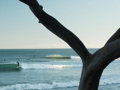 https://imgc.allpostersimages.com/img/posters/a-surfer-finds-a-inside-line-at-refugio-state-park-california_u-L-Q1BANSN0.jpg?p=0