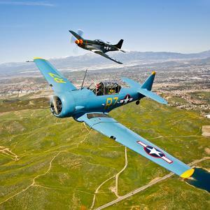 A T-6 Texan and P-51D Mustang in Flight over Chino, California