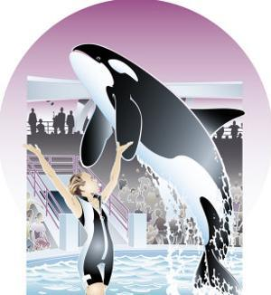 A Trained Orca