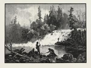 A Trout Pool on the Nepigon, Canada, Nineteenth Century