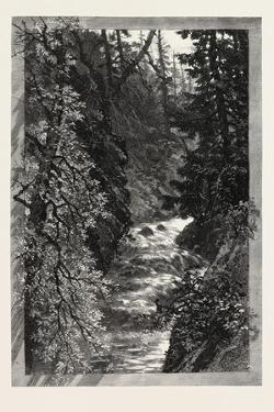 A Trout Pool on the Saugeen, Canada, Nineteenth Century