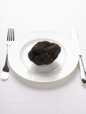 A Truffle on a White Plate