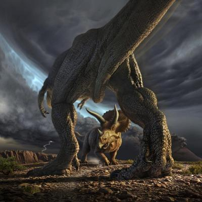 A Tyrannosaurus Rex and Triceratops in a Classic Face Off