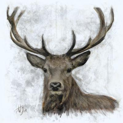 Stag by A.V. Art
