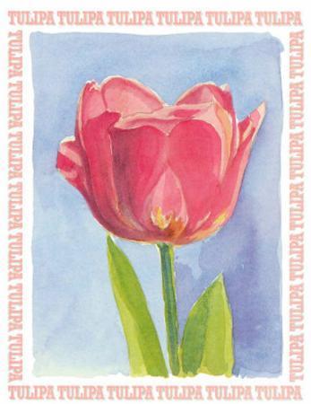 Message in a Bottle, Tulipa