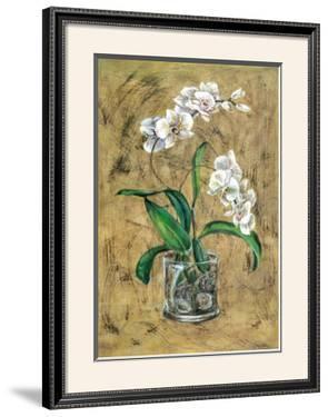 Flores Blancas I by A. Vega