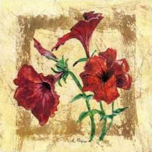 Petunia by A. Vega