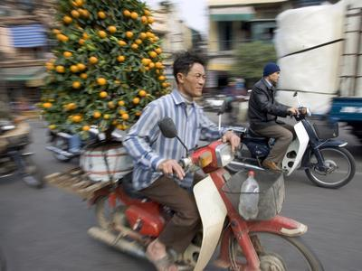 https://imgc.allpostersimages.com/img/posters/a-vietnamese-vendor-races-down-a-street-on-a-motorbike-carrying-a-kumquat-tree-for-sale_u-L-Q10OV8Z0.jpg?p=0