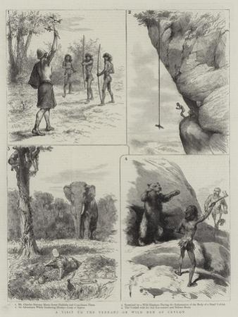 A Visit to the Veddahs or Wild Men of Ceylon