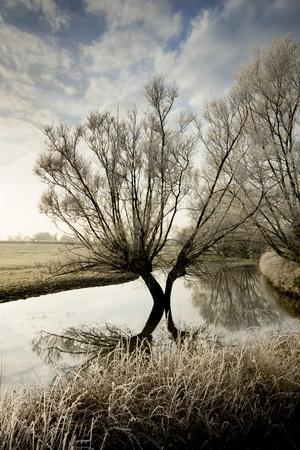 https://imgc.allpostersimages.com/img/posters/a-winter-flood-with-hoar-frost-occurs-at-the-source-of-the-river-thames-at-waterhay_u-L-PNGHQ40.jpg?p=0